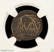 NGC评级古罗马凯撒大帝大象踩蛇银币