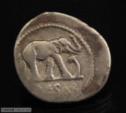 古罗马凯撒大帝大象踩蛇银币