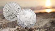帕劳2017年海胆沙钱仿真超薄大银币