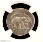 古罗马凯撒大帝大象踩蛇银币NGC评级
