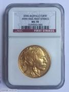2006年美国1盎司水牛金币